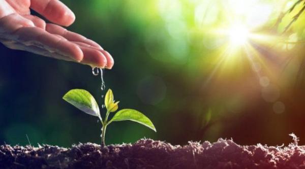 Com o Tema: Meio Ambiente Nossa Casa Comum, o CEFAS e Parceiros realizarão Seminário Sobre o Meio Ambiente!