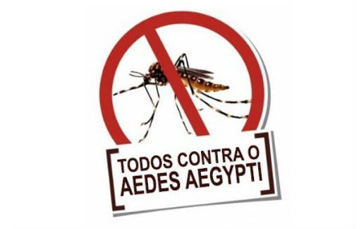 Em Época de Enfrentamento ao Covid-19, Não nos Esqueçamos da Prevenção Contra Epidemias Locais.