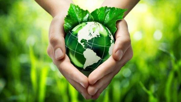 Dia Mundial do Meio Ambiente: A Igreja e a