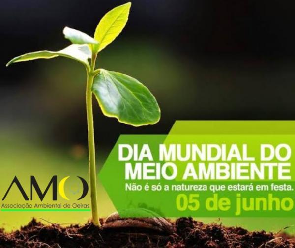 Dia do Meio Ambiente artigo o talhador de tudo isso por Emanuel Vital