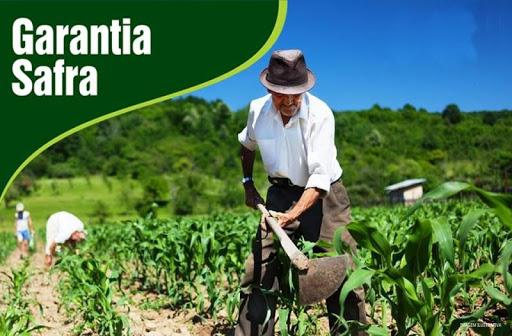 Agricultores familiares inscritos no Programa Garantia Safra já podem receber seus boletos