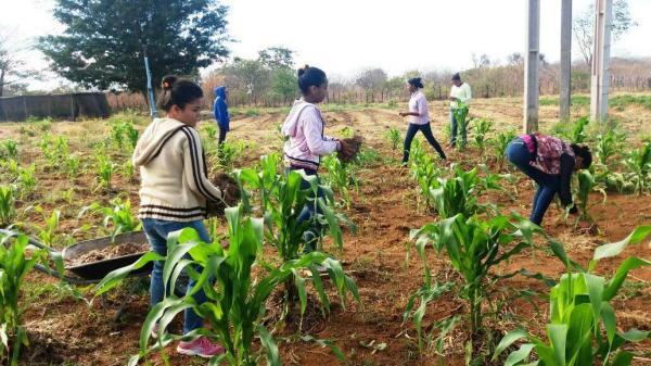 Escolas Famílias Agrícolas têm feito o diferencial na vida de jovens na região de Oeiras